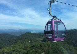 Cable car in Dalat Vietnam that takes you to a temple. There is forests all around as you ride in the car.