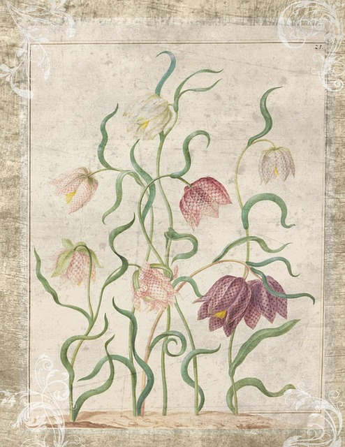 Plant Pathology History. A vintage print illustrating plants growing.
